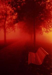 Venise. L'Île de Burano. Quand le soleil joue à cache-cache avec le brouillard, ça peut donner des choses comme ça...